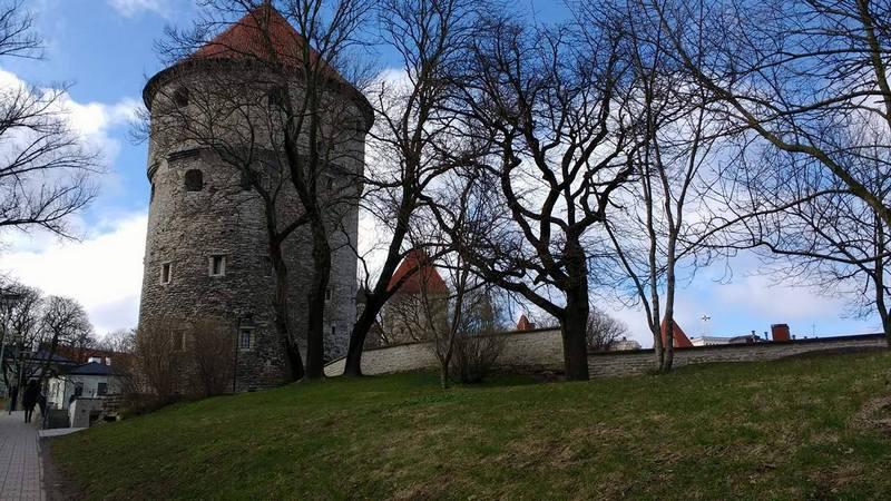 Башня Кик-ин-де-кёк (фото — Нина Бабёр)