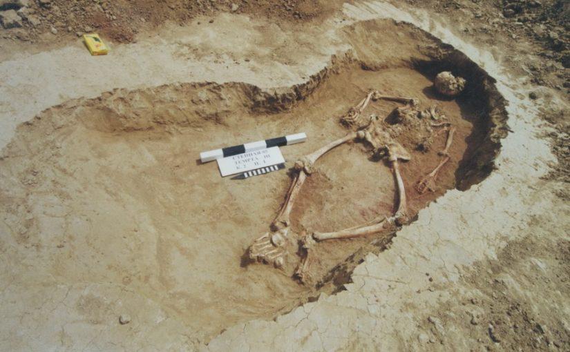 Захоронение мужчины с татуировкой. Могильник Темрта III