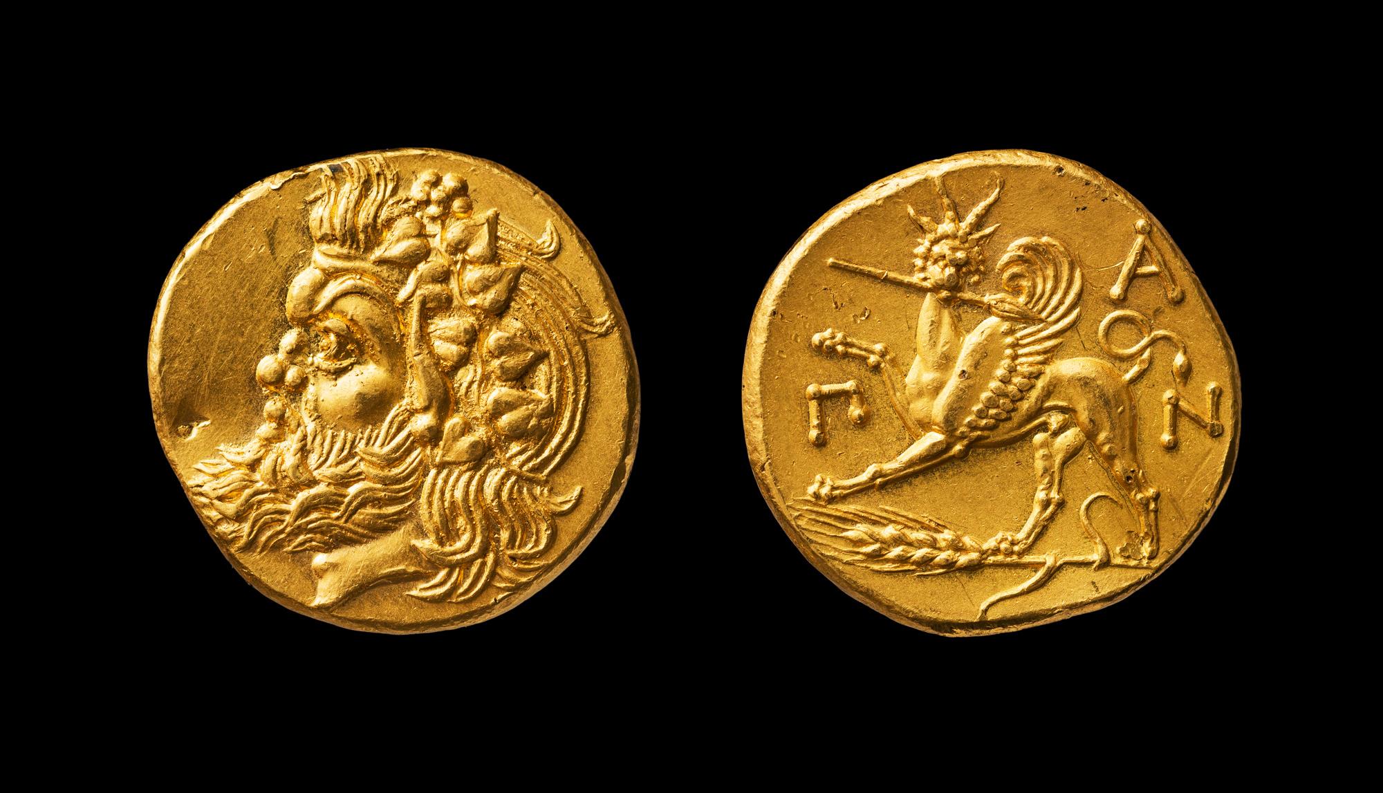 богача фото монет пантикапей золотые животное встретите