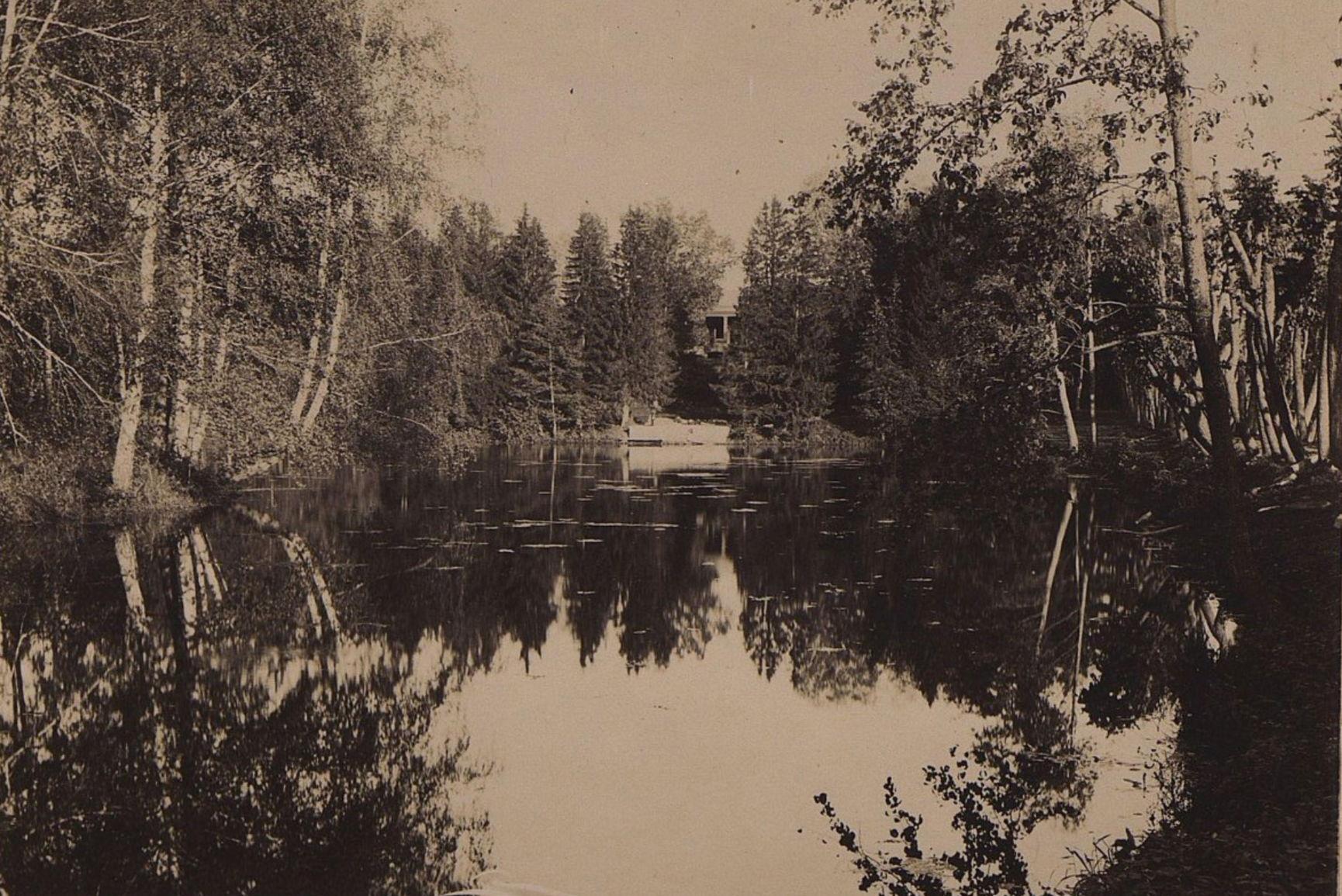 Водоём в лесу. 1896 г.