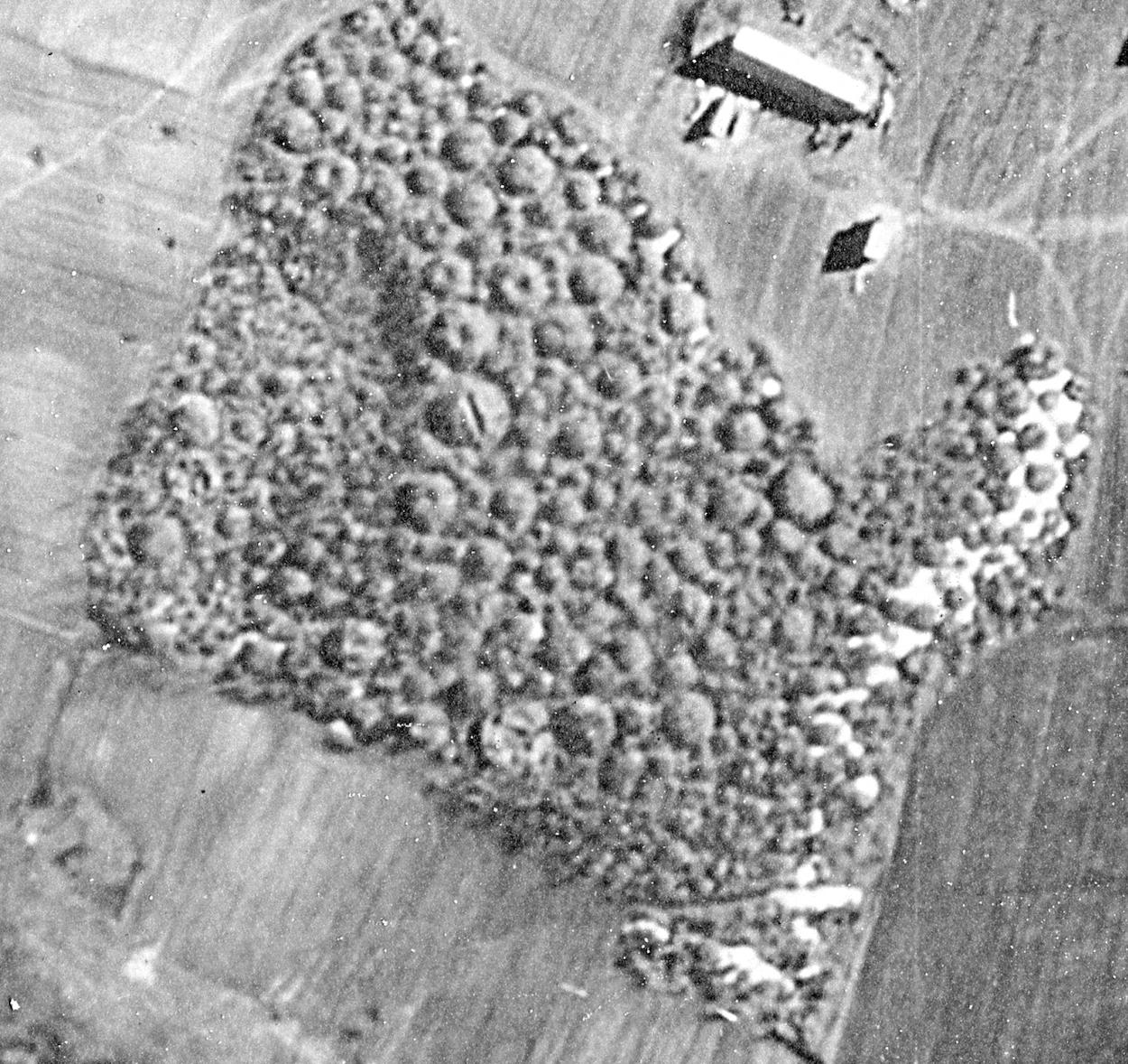 Курганный могильник у деревни Большое Тимерево. Аэрофотосъемка. Апрель 1942 года.