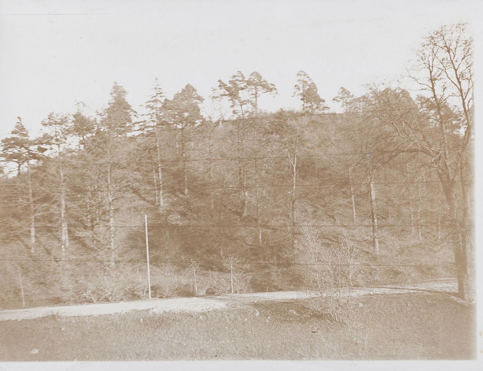 """""""Наполеоновская Гора"""" вблизи города Ковно. 1910 г. Бумага, серебряно-желатиновый отпечаток"""