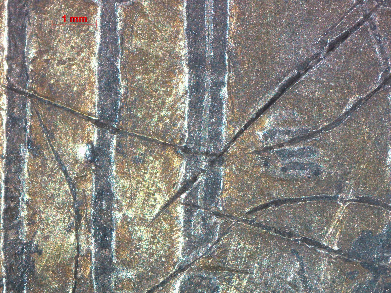 Макрофотография участка монеты с граффити. Фотография выполнена c помощью фотокамеры AxioCam ERc5s стереомикроскопа Carl Zeiss Stemi 2000C. Оператор С.А. Стефутин.